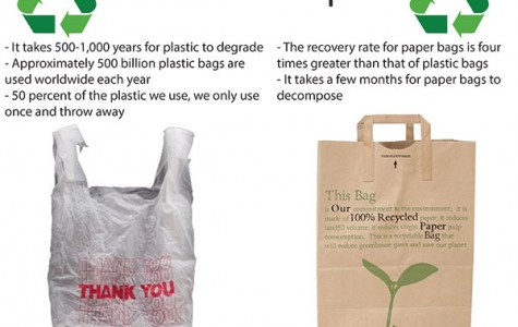 California transitions to paper and reusable bags