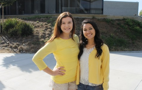 Yellow Ribbon Week brings suicide awareness to CHS