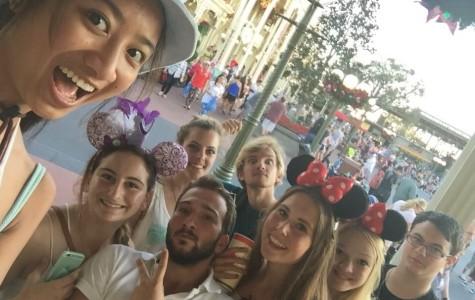 Behind the cardboard: Evaluating the Disney magic