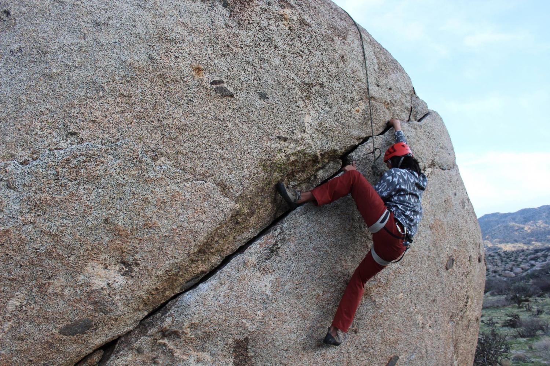 Lehrmann climbs to success