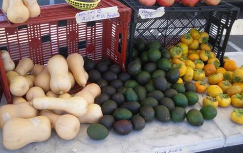 Community strengthens Carlsbad farmers' market