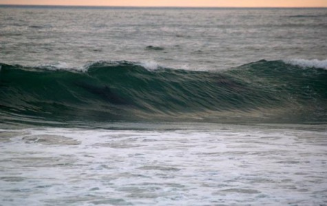 Surf team submerged by tidal wave of groms