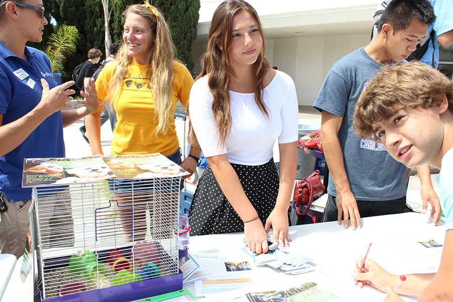 Vice+president+of+SETA+club%2C+Laura+Vasse+encourages+and+assists+students+signing+up.++Meanwhile+Sophie+Blake%2C+the+club+president%2C+converses+with+Brianne+from+the+American+Society+for+the+Prevention+of+Cruelty+to+Animals.