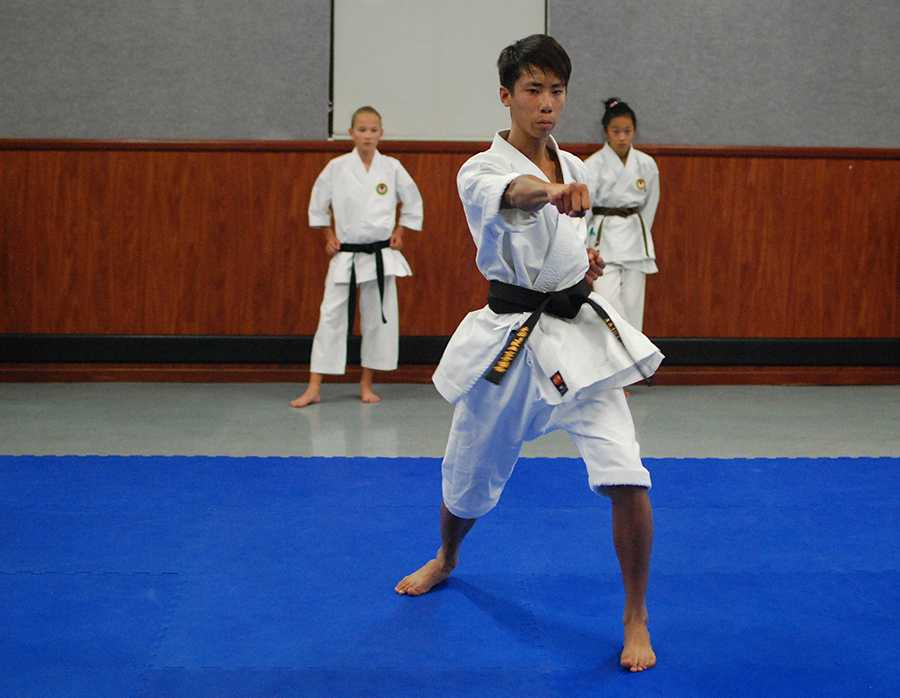 Sophomore+Brandon+Hong+has+been+involved+in+karate+for+over+10+years+which+proves+his+passion+for+the+sport.+During+practice+he+works+on+developing+his+technique+along+with+helping+other+children+in+the+class.+