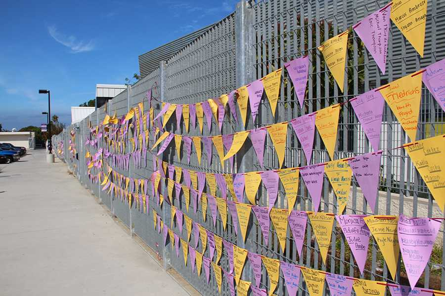 ASB put of individual flags with the names of three people attending CHS on each. The flags were up for the first couple days of school and welcomed all the CHS students.
