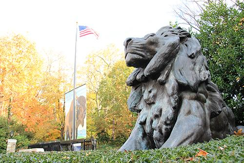 A+statue+of+a+lion+greets+people+at+the+entrance+of+the+zoo.+
