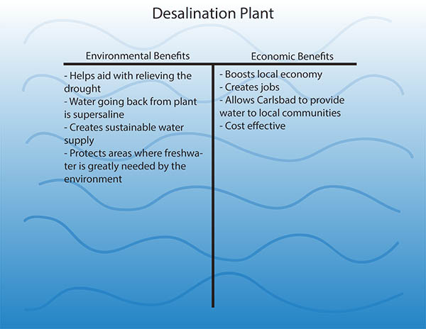 Desalination plant sends ripples across the community