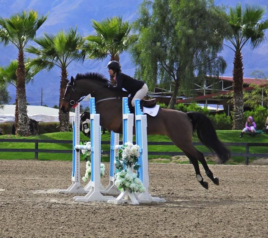 Emma Warren competing with her horse Wally,