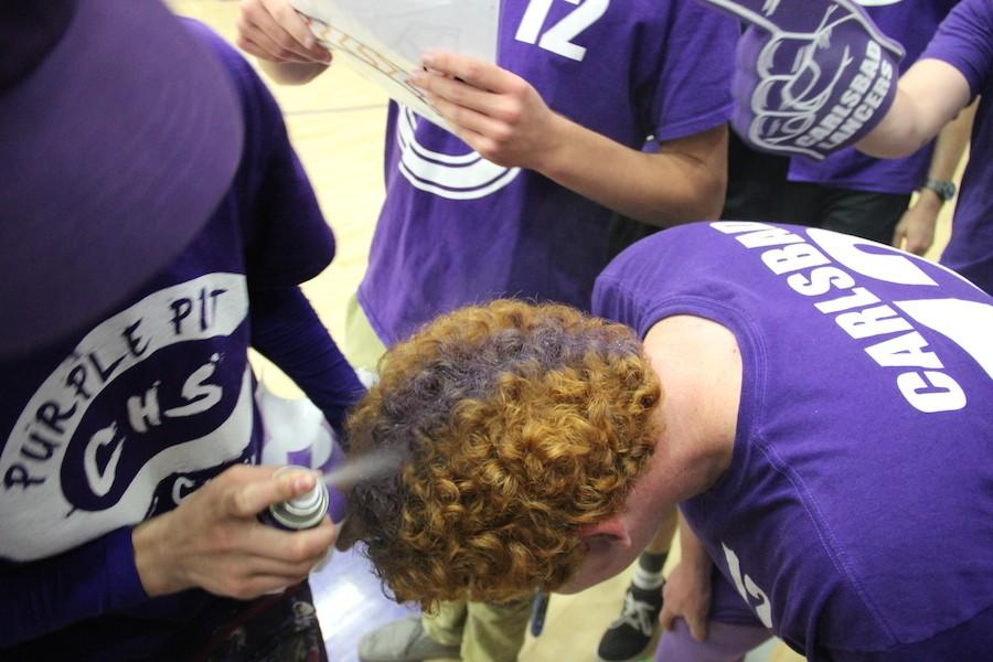 Loud+Crowd+leader+Kyle+Plotkin+gets+his+hair+dyed+mid+game+last+week+against+Sage+Creek.+Many+other+fans+showed+their+purple+pride+helping+the+Lancers+win+54-49.+