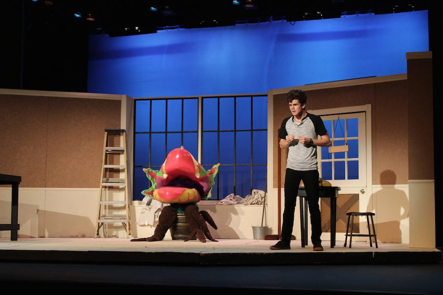 BRIEF: Little Shop of Horrors