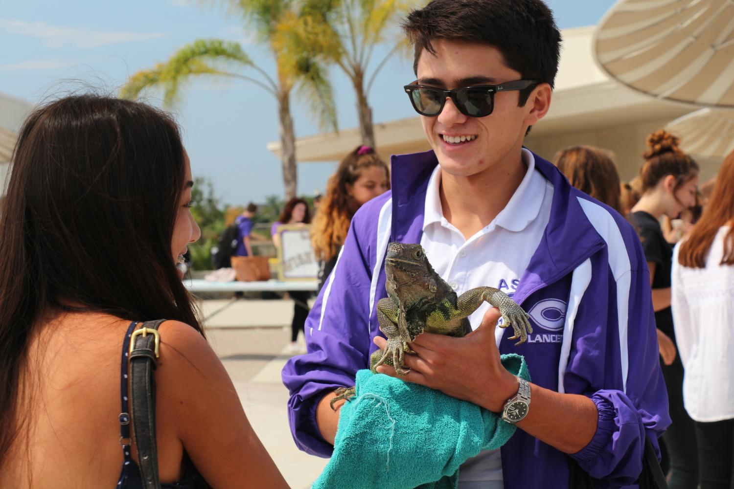 Senior, Max Ward, holds iguana, Iggy, as he discusses the Green Club with sophomore, Tram-Anh Pham, at the club fair.