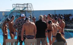 Splashing into water polo's growing brotherhood