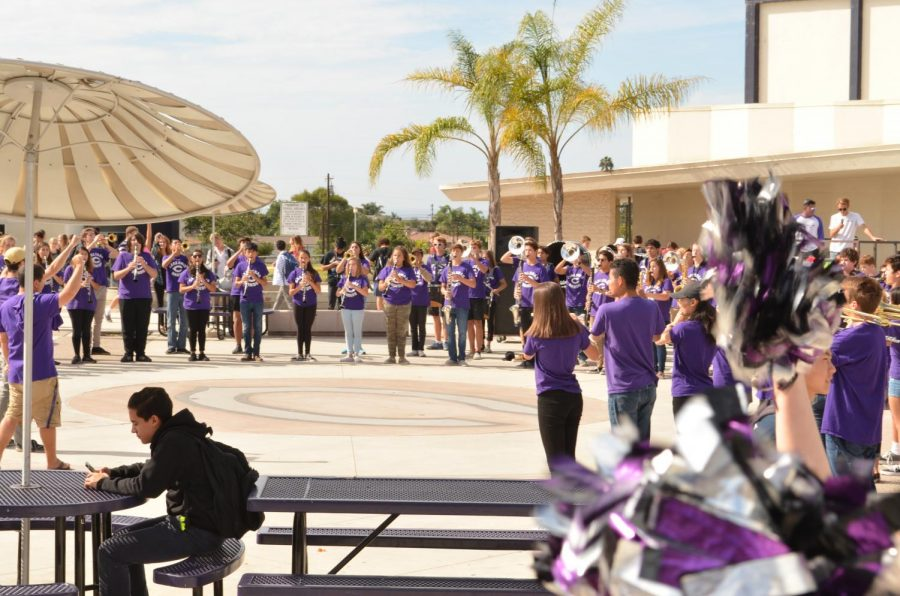 The Marching band performs during their last pep rally. They had practiced before every pep rallies during lunch to get every note down.