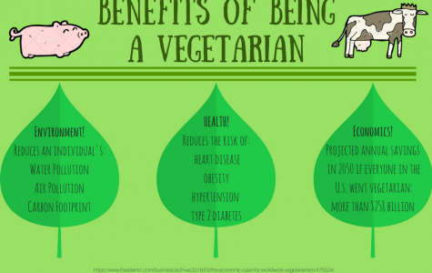 Why I prefer to eat vegetables instead of animals