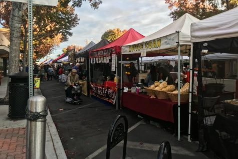 Booths setup at the village street fair for sale of food and other items, Wednesday, Nov. 8. The village street fair occurs on State Street in the village on Wednesdays.