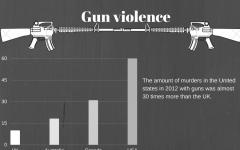 The debate on gun control