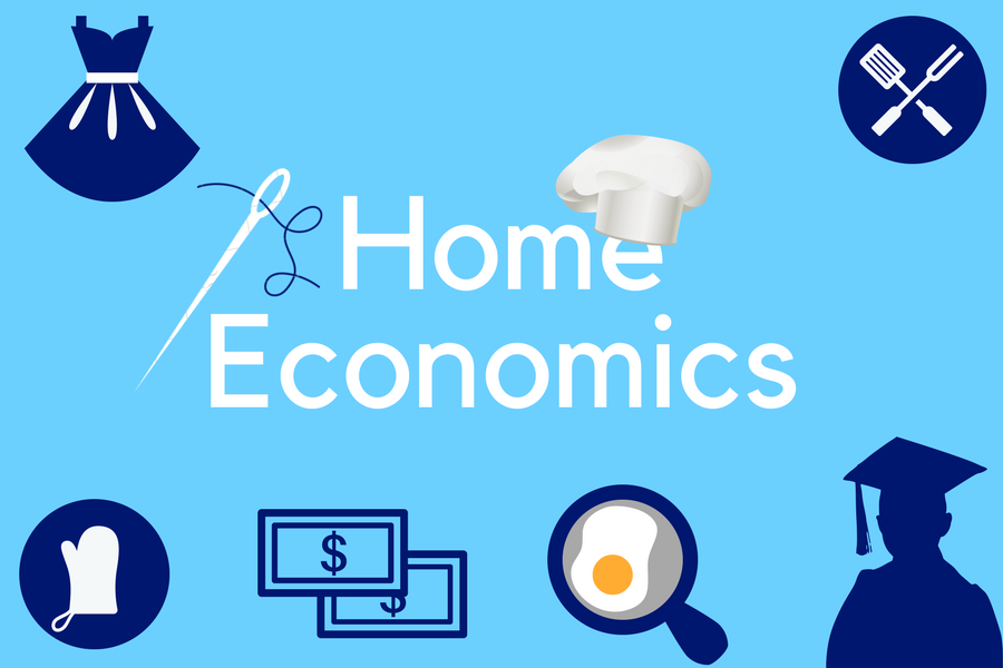 Could Schools Benefit From A Home Economics Class The Lancer Link