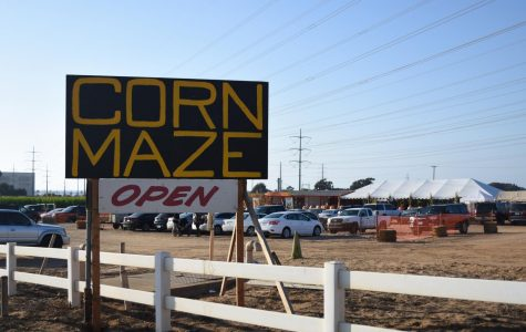 Large signs allow the maze to be seen from a variety of roads. The field contains two mazes, one with scary actors, and another of a higher difficulty.