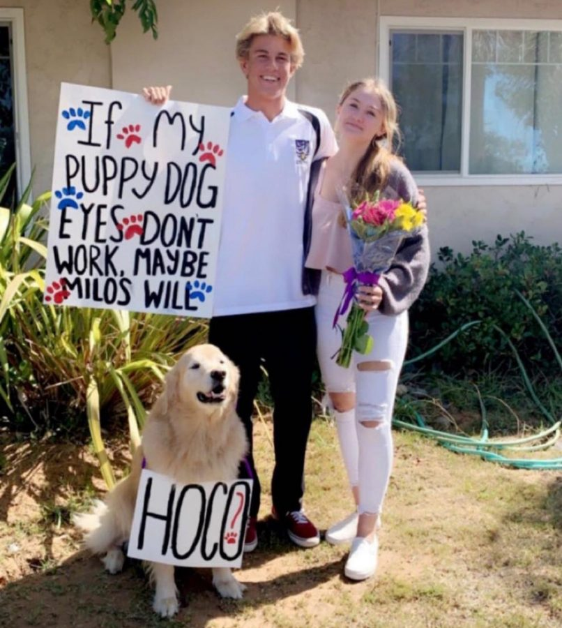 Junior Jack Ochoa asks junior Charley Temme to homecoming using his dog, flowers and a sign as props.
