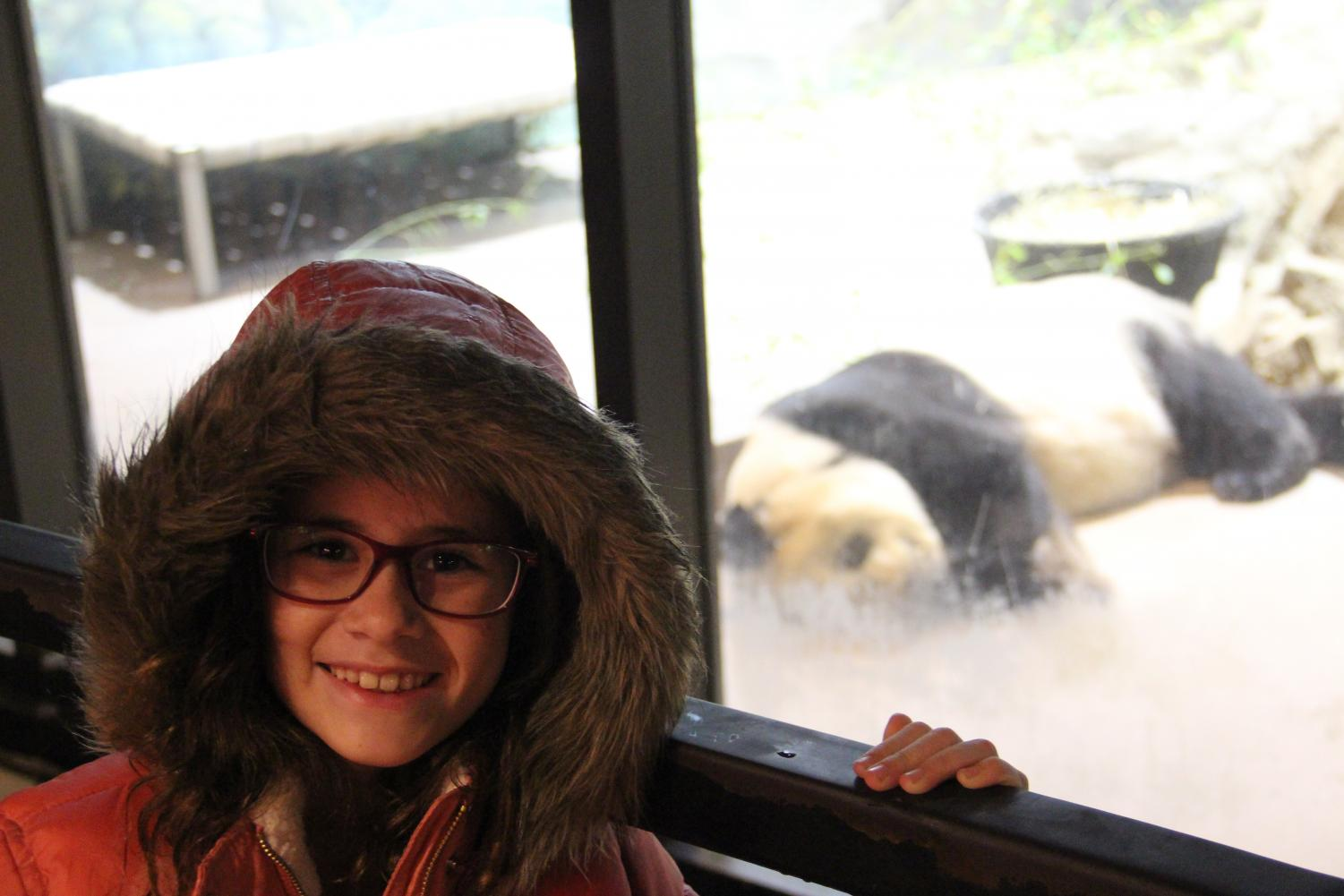 Californian Lily Ryan visits the National Zoological Park. As a panda fan, Ryan was saddened that both the Smithsonian and San Diego (the largest zoo in California) zoos had lost pandas.