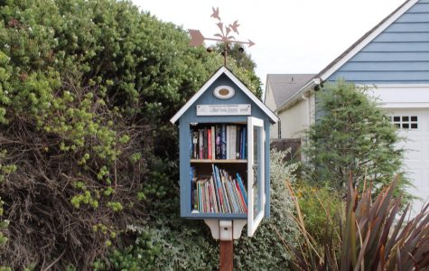 "Joanne Martinez's book exchange location stands in front of the house it was modeled after. The successful impact of Martinez's Little Free Library allowed her to help other book exchanges in the community. ""We have an excess number of books,"" Martinez said. ""We will oftentimes put them all in a box and go and drop them off at someone else's little library to share."""