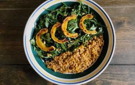Delicata squash salad with dried cherries and pine nuts. Paired with farro.