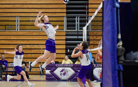 Varsity volleyball continues their winning streak against Mount Carmel
