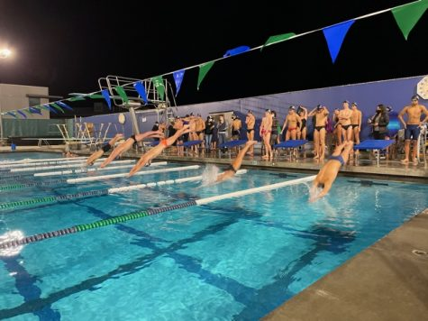 The swim team in action at one of their meets. The boys team is just starting their freestyle.